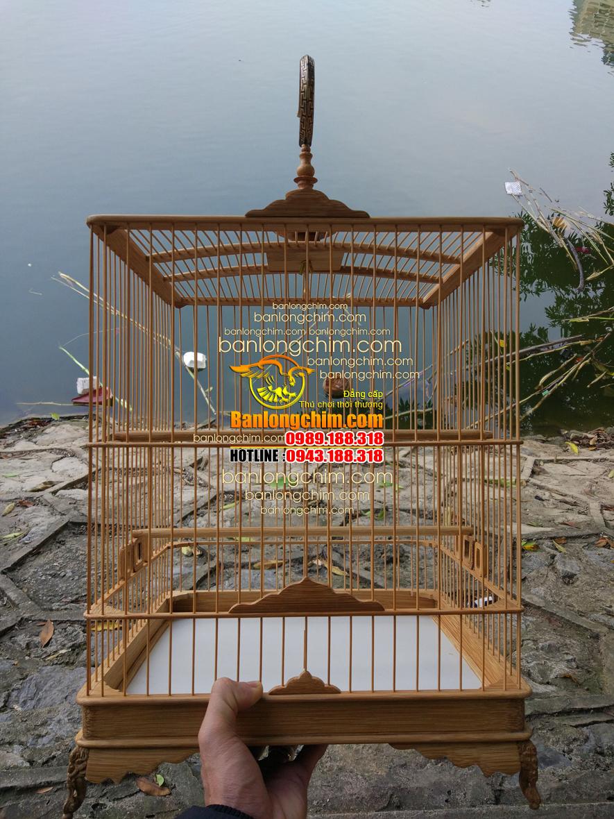 long chao mao khong tru